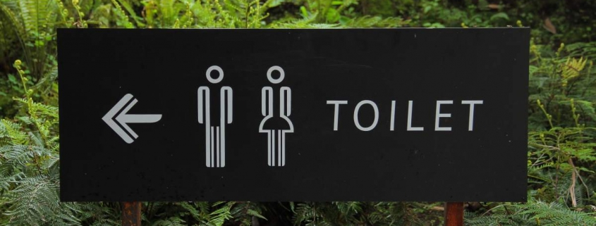 Incontinence and the prostate